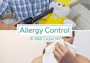 Allergy Control - Mill Island 11234