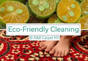 Eco Friendly Cleaning - Mill Island 11234