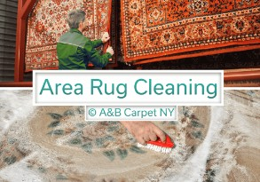 https://www.ontimesteamcleaning.com/brooklyn-carpet-cleaning/